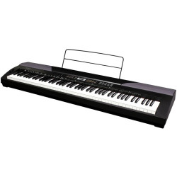 Beale DP300 88 Key Weighted Hammer Action Digital Piano