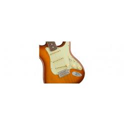 Fender American Performer Stratocaster Electric Guitar Rosewood FB Honey Burst