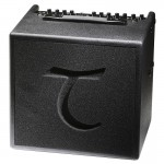 Tanglewood T6 acoustic guitar amplifier
