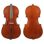 Enrico Student II 4/4 Cello