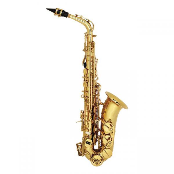 Nuova Alto Saxophone NAS3GL
