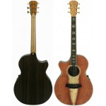 Cole Clark Angel 3 CCAN3EC-RDR Redwood Rosewood