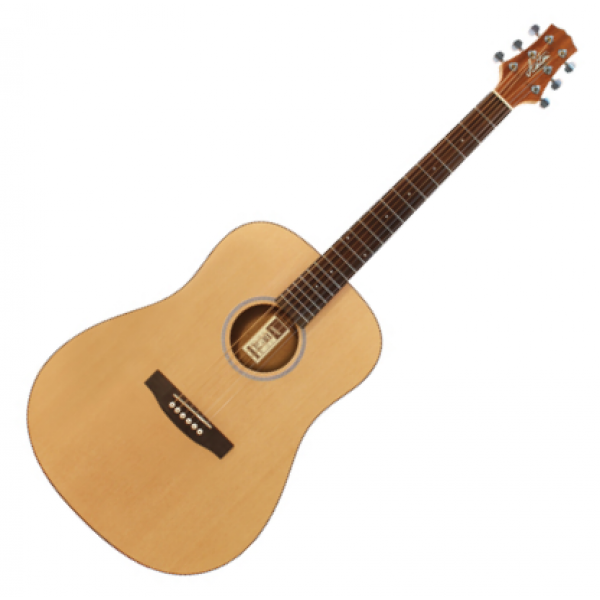 Ashton D20NT Acoustic Guitar pack