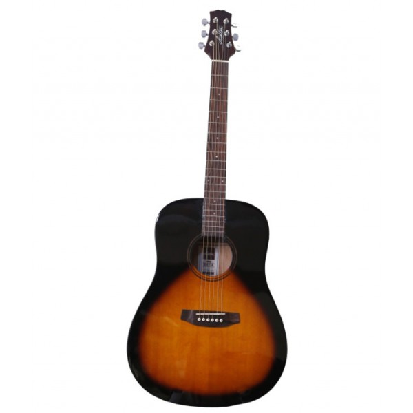 Ashton D20 Acoustic Guitar