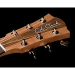 Cole Clark Fat Lady 2 FL2EC-BB Bunya Blackwood