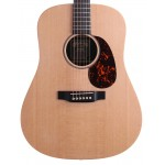Martin DX1AE X-series