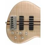 Cort Artisan A6 6 String Bass