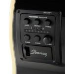 Ibanez AEG10NII electric classical